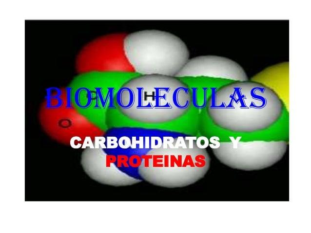 BIOMOLECULAS CARBOHIDRATOS Y PROTEINAS