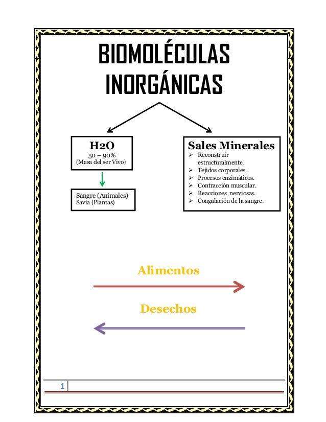 BIOMOLÉCULAS INORGÁNICAS H2O 50 – 90%  (Masa del ser Vivo)  Sangre (Animales) Savia (Plantas)  Sales Minerales  Reconstru...