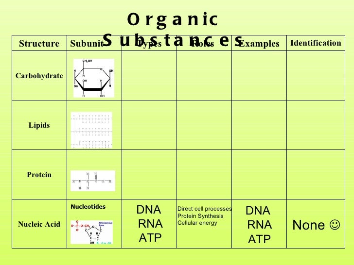 What are nucleic acids functions