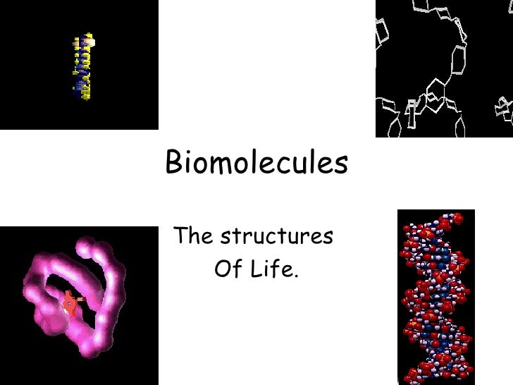 BiomoleculesThe structures   Of Life.