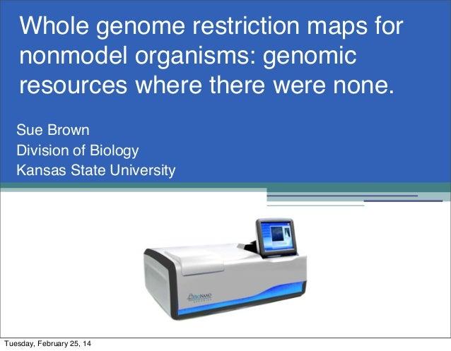 Bionano genome maps_feb2014