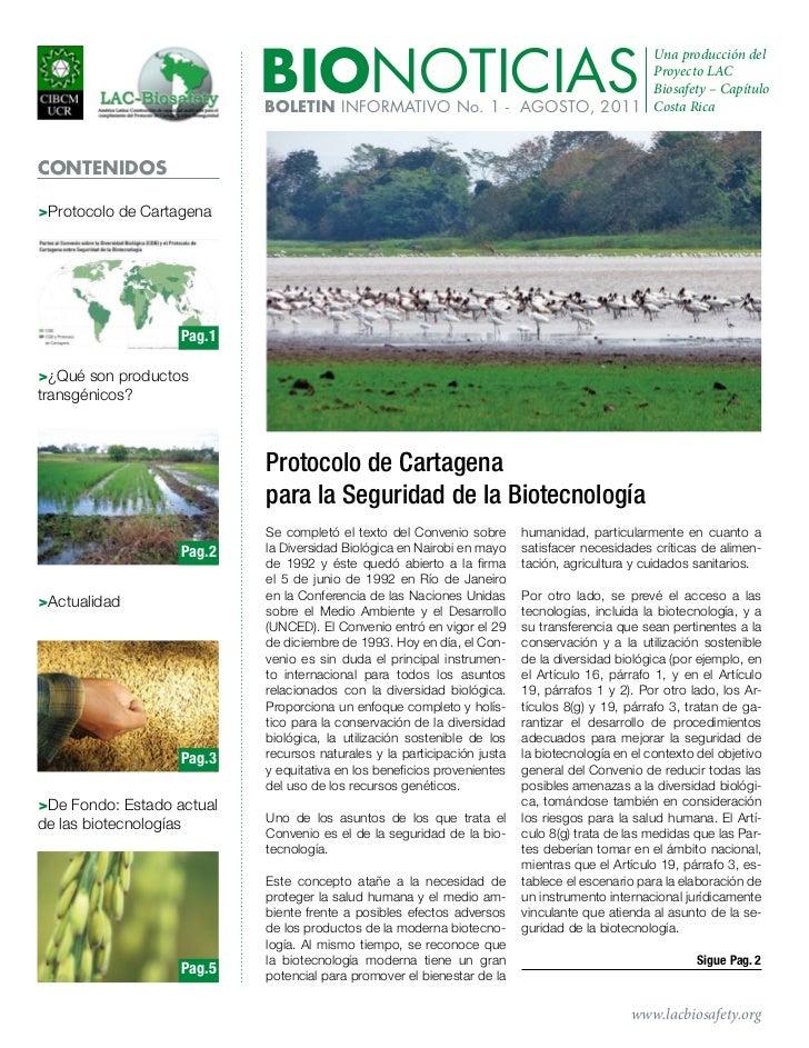 Boletín, Agosto 2011