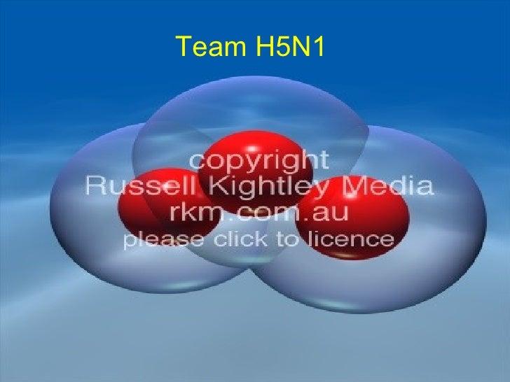 Team H5N1