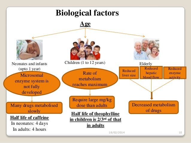 biological factors Biological factors : food and predation for any organism to grow and flourish, it must consume a certain volume of nourishing food to not only sustain it, but also to increase size and produce offspring.