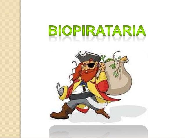 A biopirataria consiste no ato da retirada ilegal de material genético, espécies de seres vivos e exploração da sabedoria ...