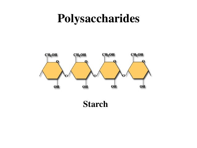 new examples of carbohydrates monomers example
