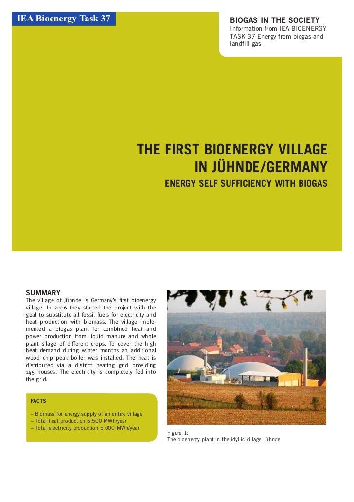IEA Bioenergy Task 37                                                                  BIOGAS IN THE SOCIETY              ...