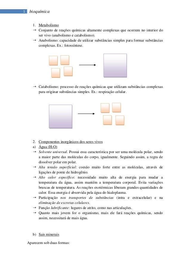 1    bioquímica       1. Metabolismo        Conjunto de reações químicas altamente complexas que ocorrem no interior do  ...