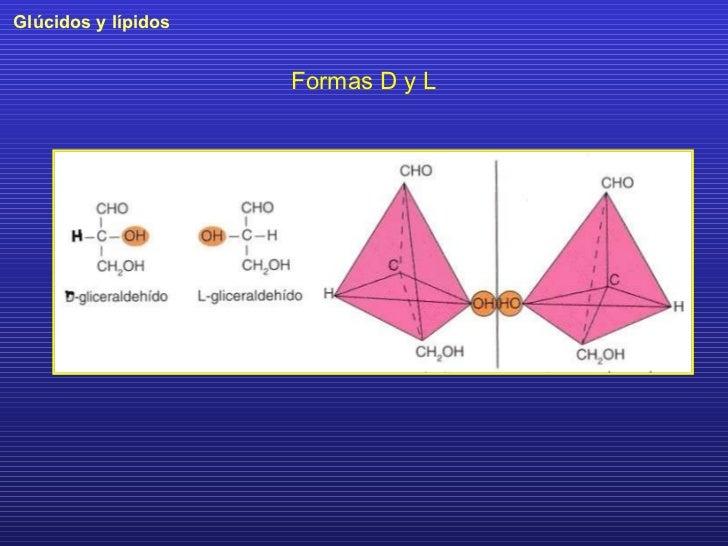 Formas D y L