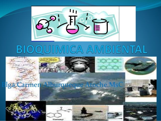 Blga.Carmen Alburqueque Atoche.MsC
