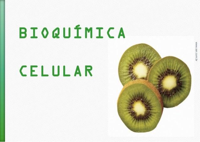 www.ser.com.br BIOQUÍMICA CELULAR