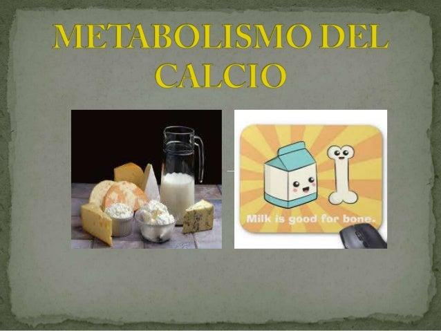 Es un metal alcalinotérreo que cumple una importante función estructural en nuestro organismo al ser parte integrante de h...