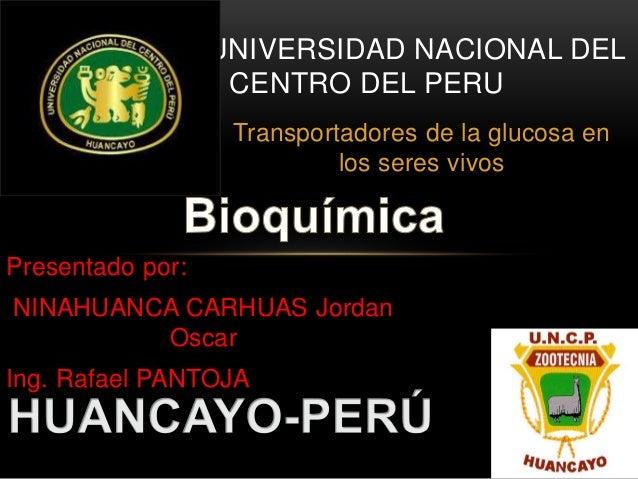 UNIVERSIDAD NACIONAL DEL  CENTRO DEL PERU  Transportadores de la glucosa en  los seres vivos  Presentado por:  NINAHUANCA ...