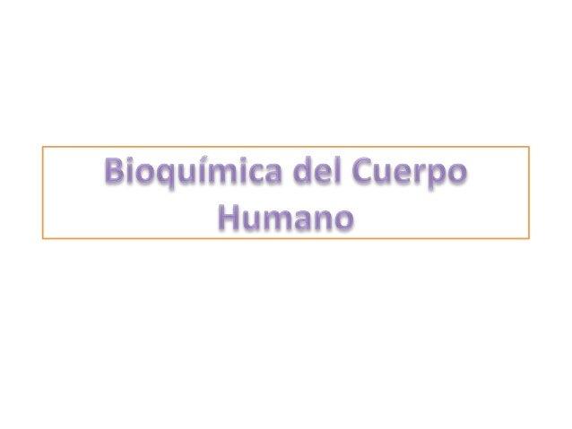 • El ser humano esta constituido por bioelementos, los cuales se clasifican en primarios, secundarios y oligoelementos. • ...