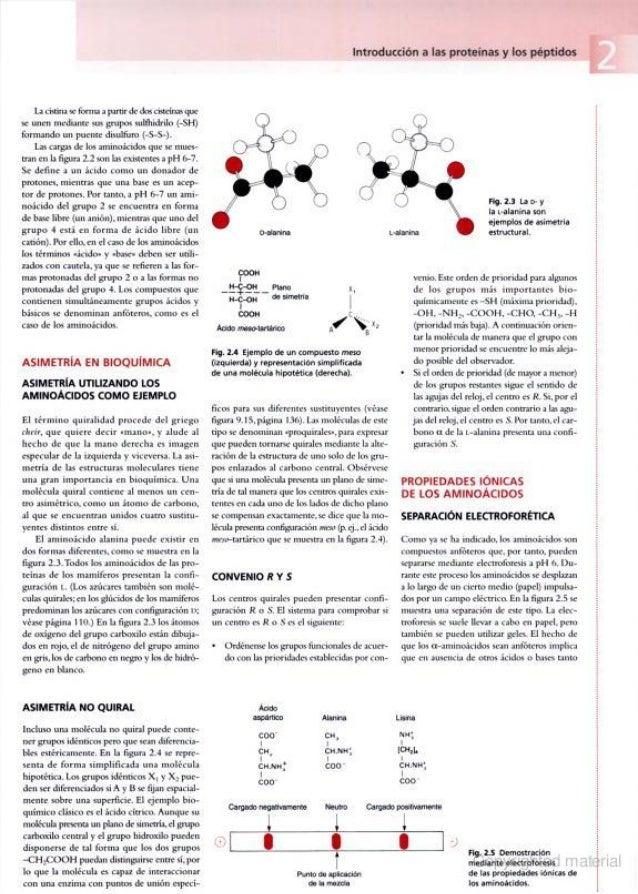 Harper Bioquimica Ilustrada 28 Edicion Pdf