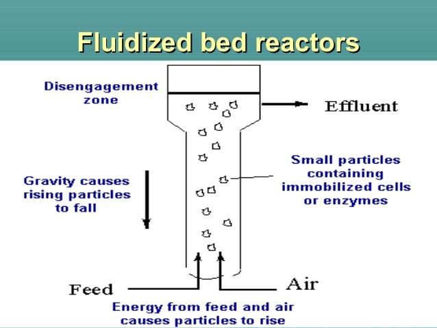 fluidised bed reactors 1