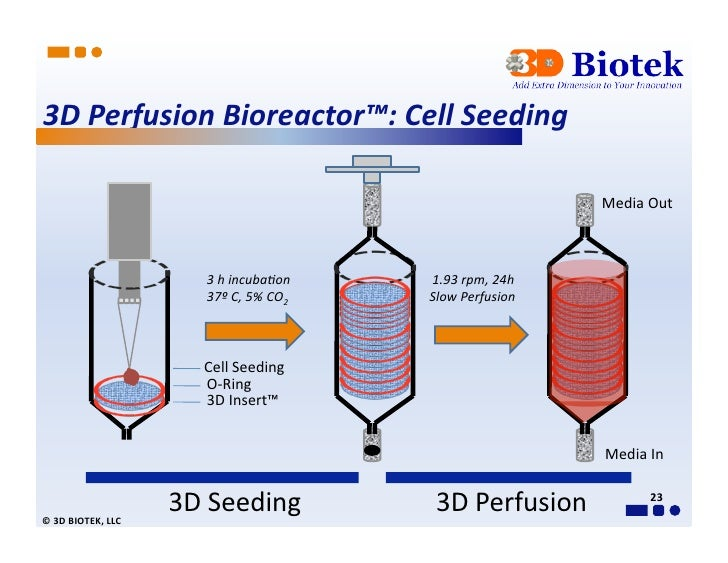 3d Perfusion Bioreactor Technical Presentation