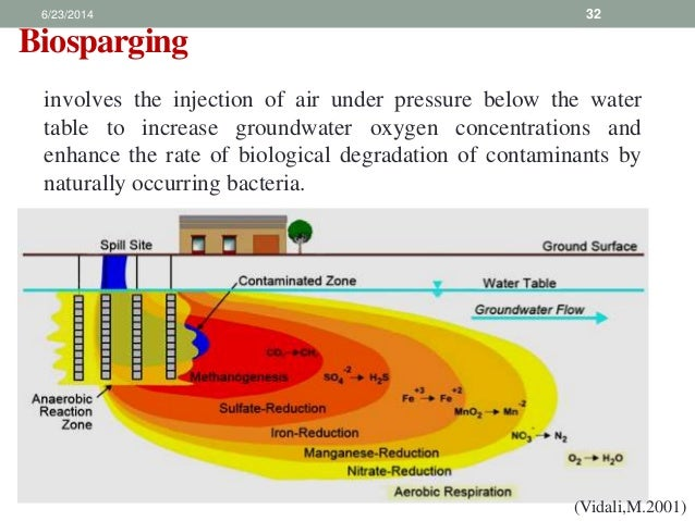bioremediation of pesticides thesis