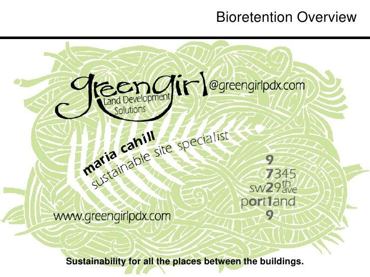 Bioretention1 overview