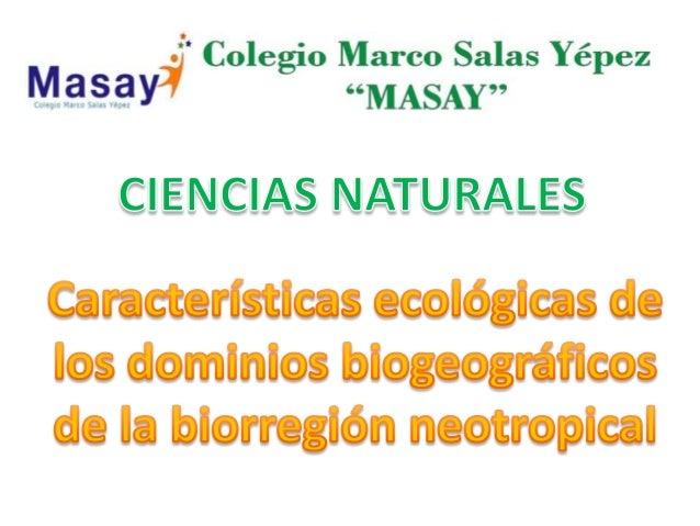 Biorregion neotropical
