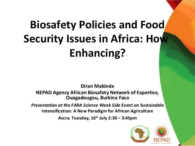 Biosafety Policies and Food Security Issues in Africa: How Enhancing? Diran Makinde NEPAD Agency African Biosafety Network...