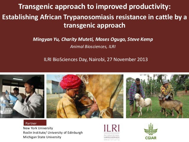 Transgenic approach to improved productivity: Establishing African Trypanosomiasis resistance in cattle by a transgenic ap...