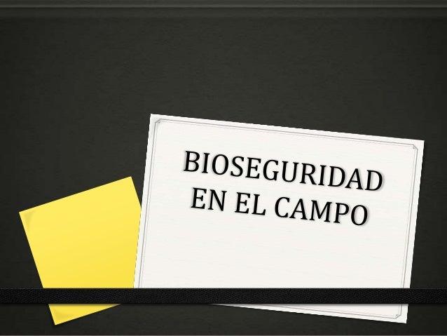 BIOSEGURIDAD Término utilizado para describir las políticas y procedimientos adoptados para la aplicación segura de la bio...
