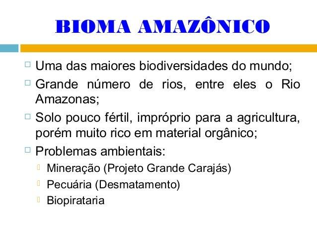 BIOMA AMAZÔNICO        Uma das maiores biodiversidades do mundo; Grande número de rios, entre eles o Rio Amazonas; Sol...