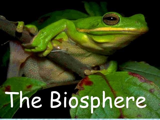 Biosphere fc-fw