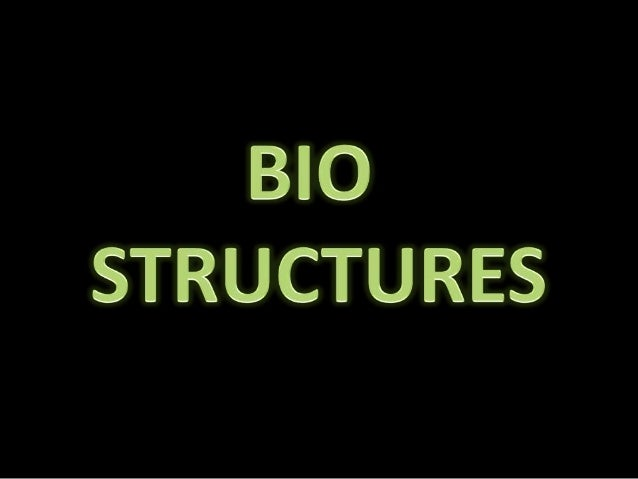 The structures giving biological analogy in their form, materialapplication, functionality etc are coined as BIO STRUCTURE...
