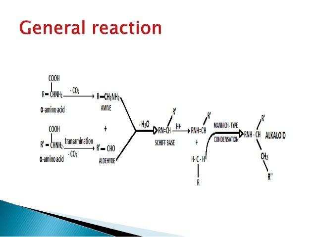 biosynthesis of tropane alkaloids pdf