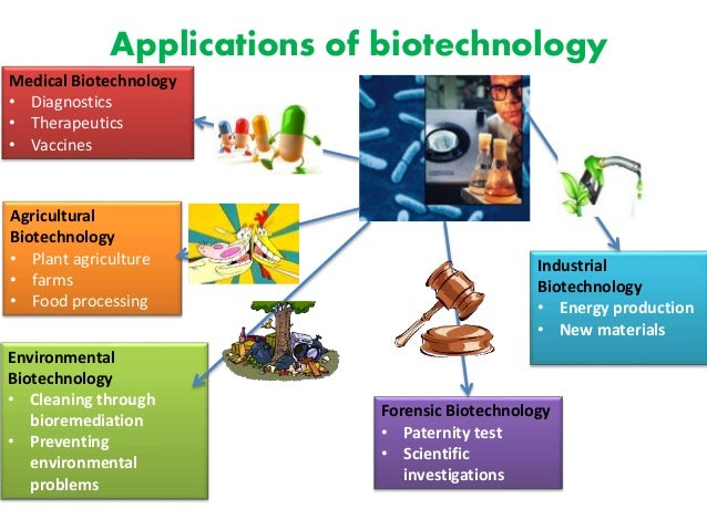 biotechnology in environment clean up process Biotech plants for bioremediation cleaning up more efficiently with green green technology for the clean up of toxic metals in the environment 2005.