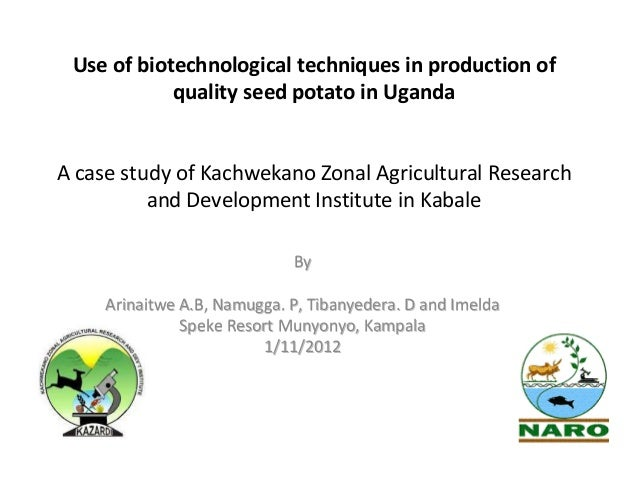Use of biotechnological techniques in production of quality seed potato in Uganda  A case study of Kachwekano Zonal Agricu...
