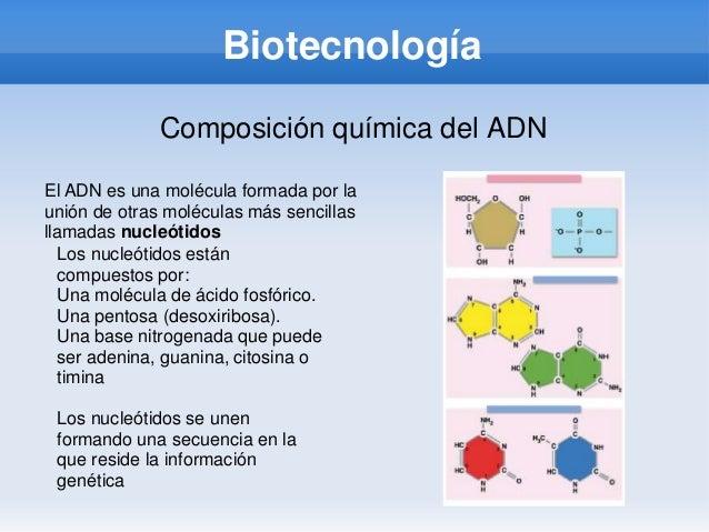 BiotecnologíaComposición química del ADNEl ADN es una molécula formada por launión de otras moléculas más sencillasllamada...