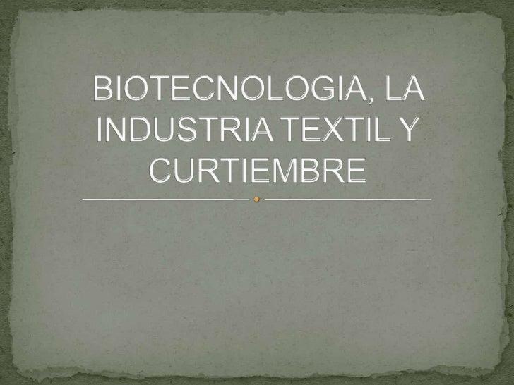 BIOTECNOLOGIA, LA INDUSTRIA TEXTIL Y CURTIEMBRE<br />