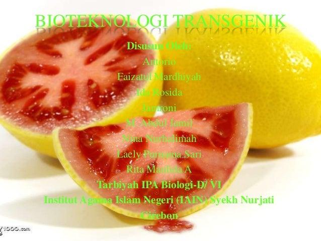 Bioteknologi transgenik (kel 2)