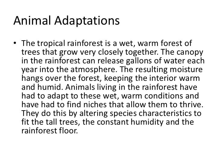 adaptive features of plants and animals in mountains A good place to find plenty of mountains jumping up in front of innocent clouds is by the the desert plants are of great importance to the animals of the desert.
