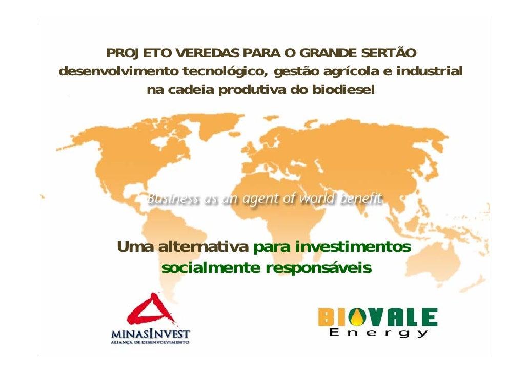 Biovale  Turn Key Project SumáRio