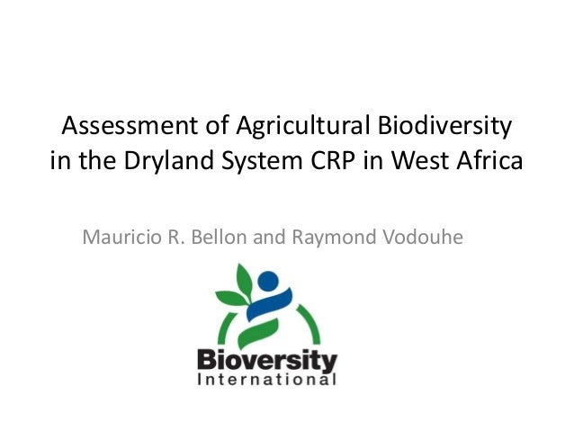 Assessment of Agricultural Biodiversity in the Dryland System CRP in West Africa Mauricio R. Bellon and Raymond Vodouhe