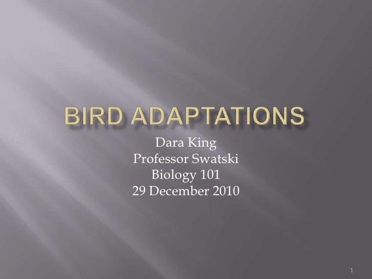 Bird Adaptations<br />Dara King<br />Professor Swatski<br />Biology 101<br />29 December 2010<br />1<br />