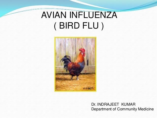 AVIAN INFLUENZA ( BIRD FLU ) Dr. INDRAJEET KUMAR Department of Community Medicine