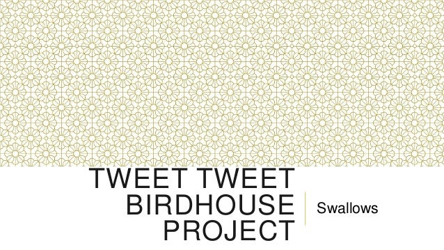TWEET TWEET  BIRDHOUSE   Swallows    PROJECT