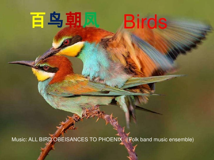 Birds, Chinese folk music