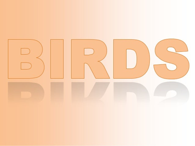 Birds: First steps on Science
