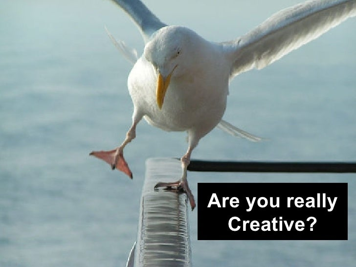 Are you really Creative?