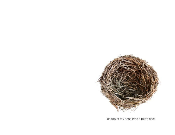 on top of my head lives a bird's nest