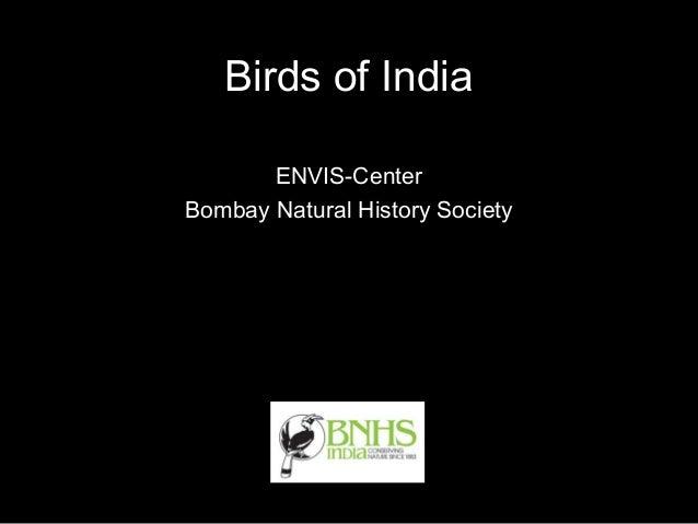 Birds of India       ENVIS-CenterBombay Natural History Society