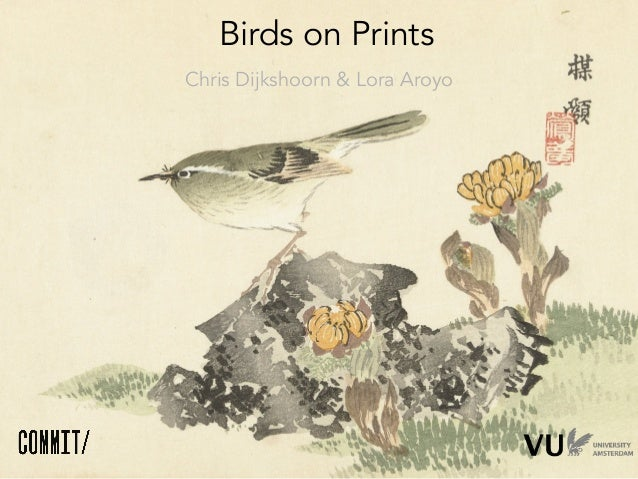 Birds on prints