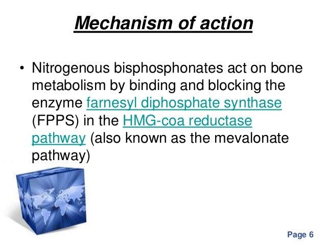 bisphosphonates mechanism of action pdf