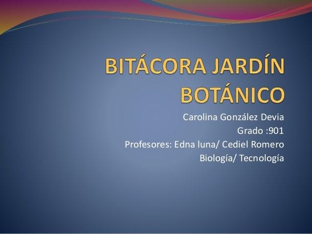 Carolina González Devia Grado :901 Profesores: Edna luna/ Cediel Romero Biología/ Tecnología